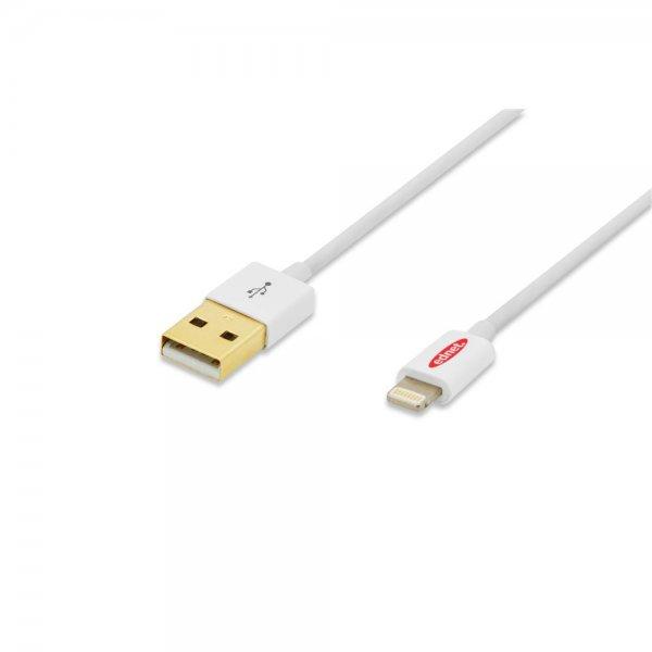 Ednet 31021 Ladekabel Datenkabel für Apple iPhone 5S 5C Lightning 8pin - USB 1m